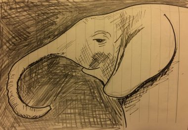 My sketch of a baby elephant at the David Sheldrick Wildlife Trust in Nairobi