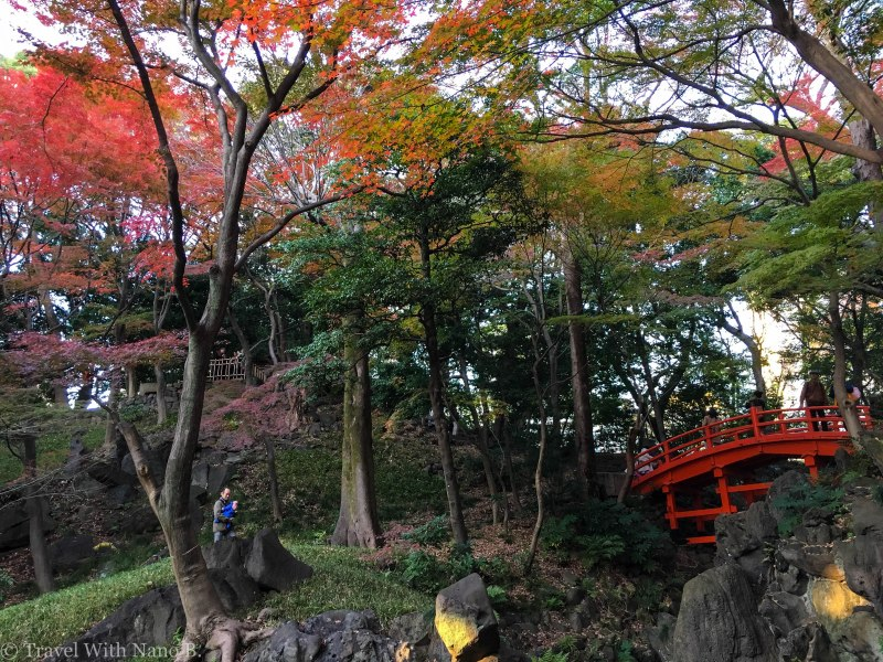 best-gardens-in-tokyo-11