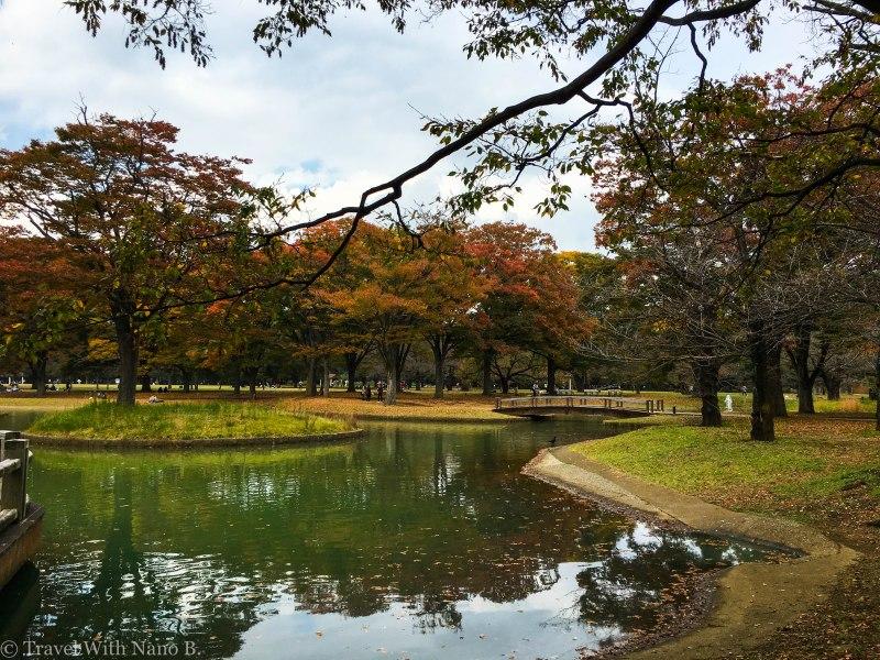 best-gardens-in-tokyo-3
