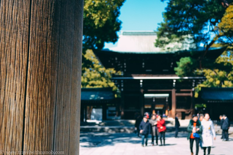 meiji-shrine-32