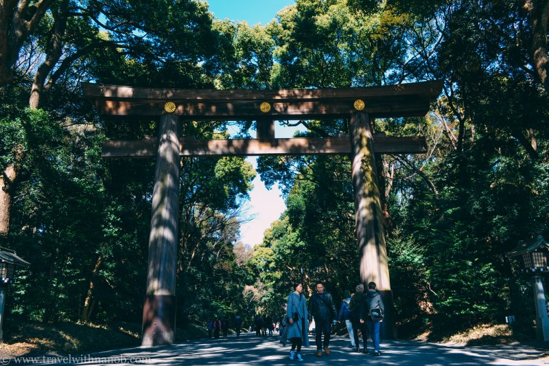 meiji-shrine-8