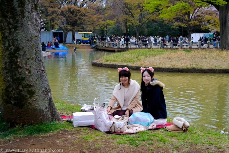 cherry-blossom-tokyo-50