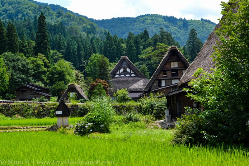shirakawago-japan-56