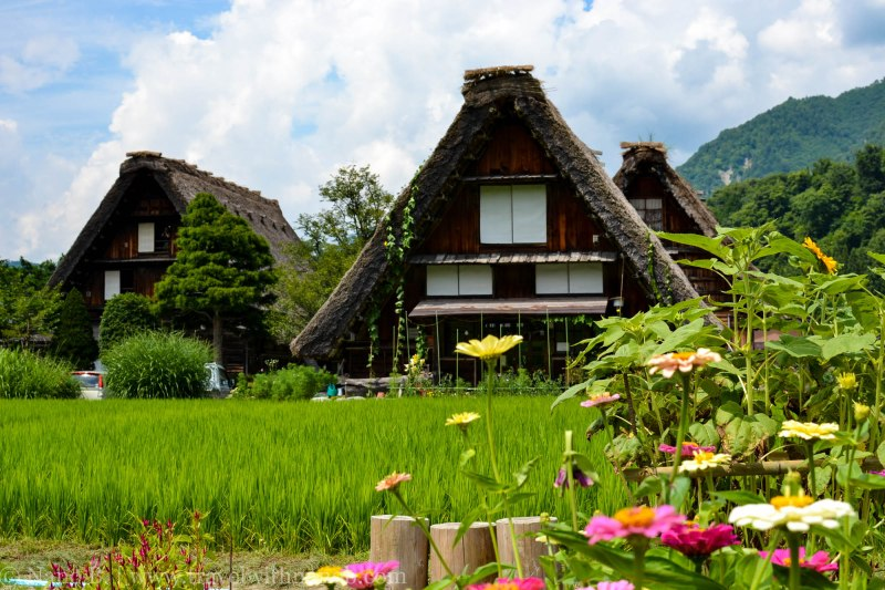 shirakawago-japan-58