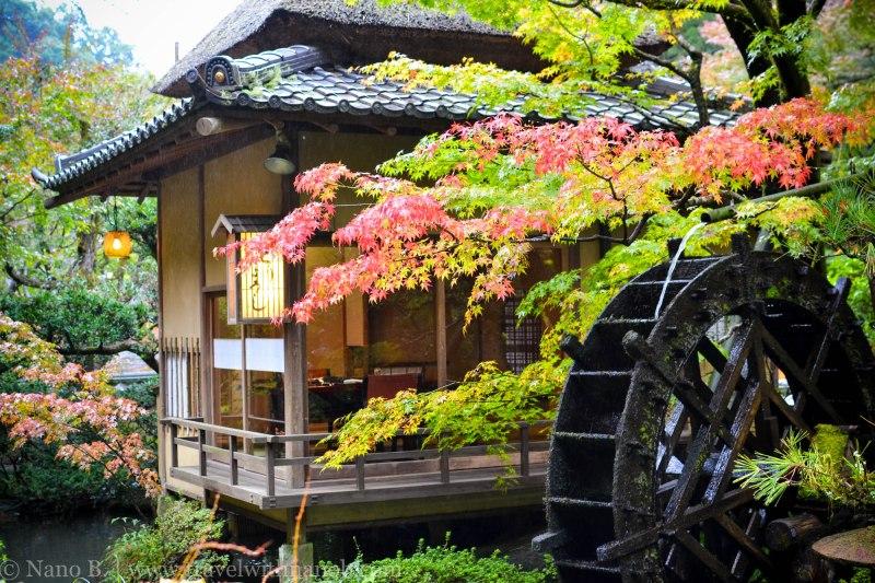 ukai-toriyama-31
