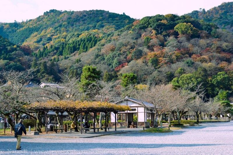 arashiyama-kyoto-2