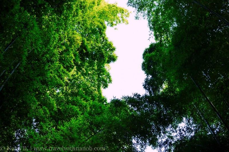 arashiyama-kyoto-26