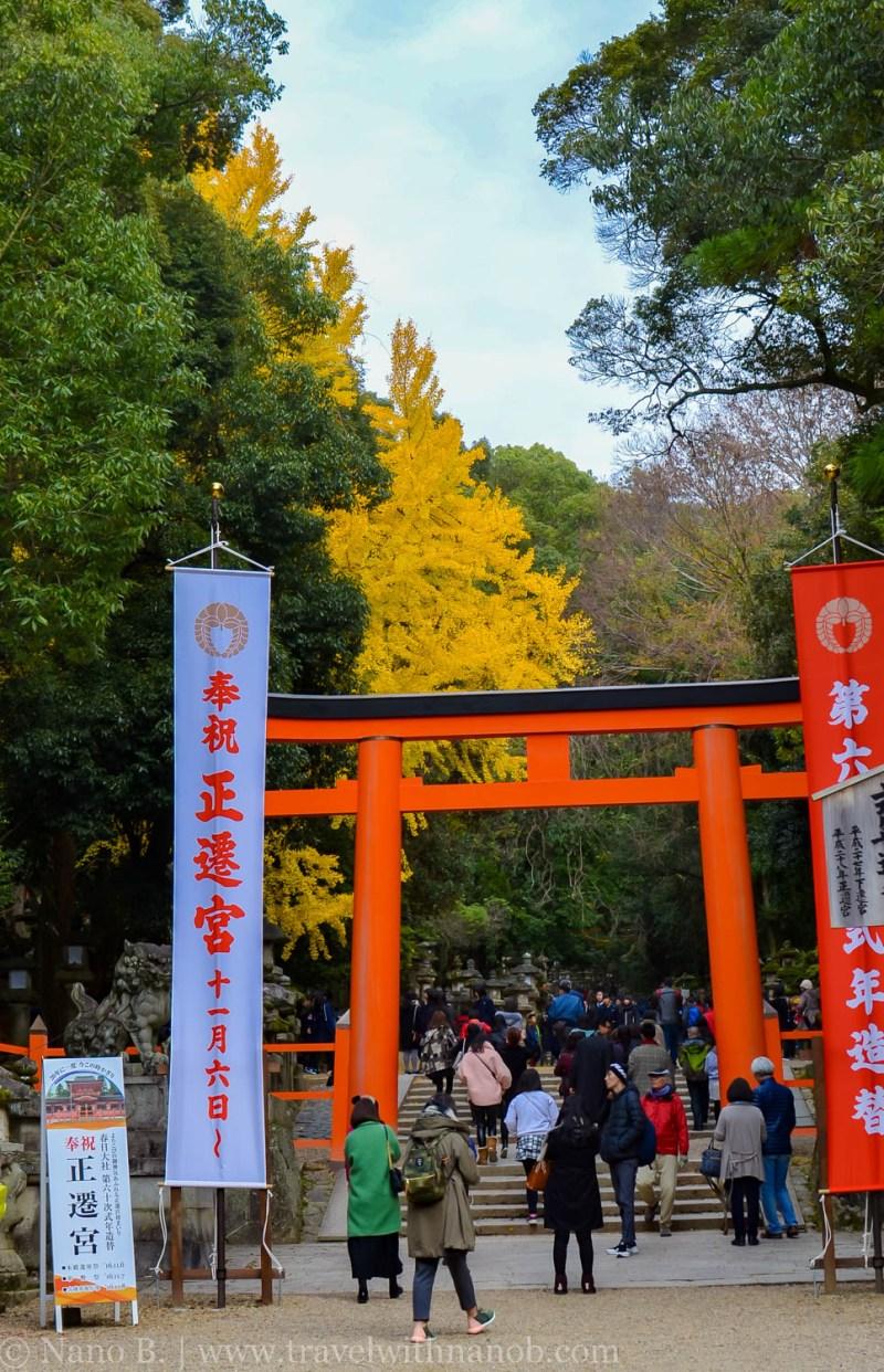 day-trip-to-nara-japan-11