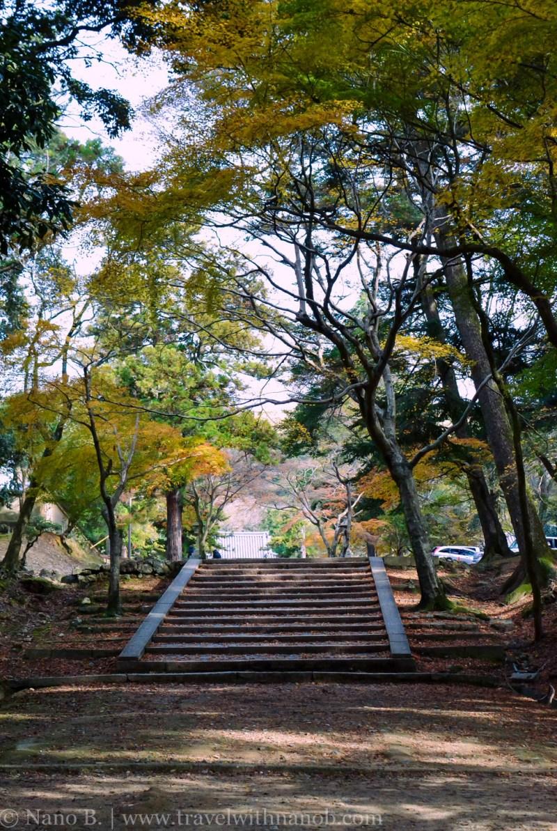 day-trip-to-nara-japan-35