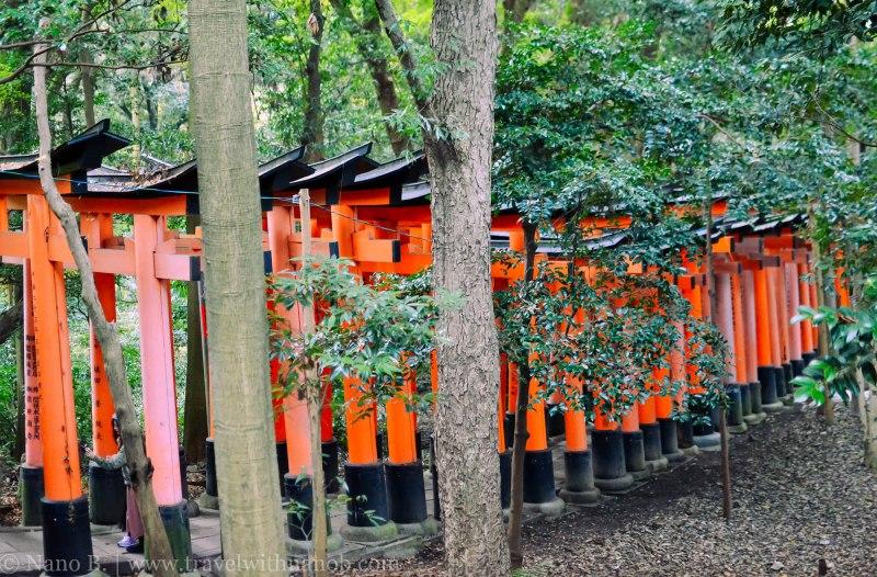 fushimi-inari-taisha-kyoto-16