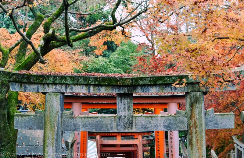 fushimi-inari-taisha-kyoto-24