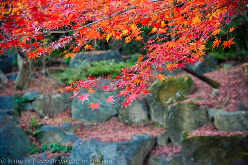 katsuo-ji-temple-osaka-43