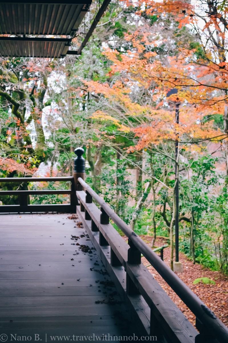 eikando-kyoto-8