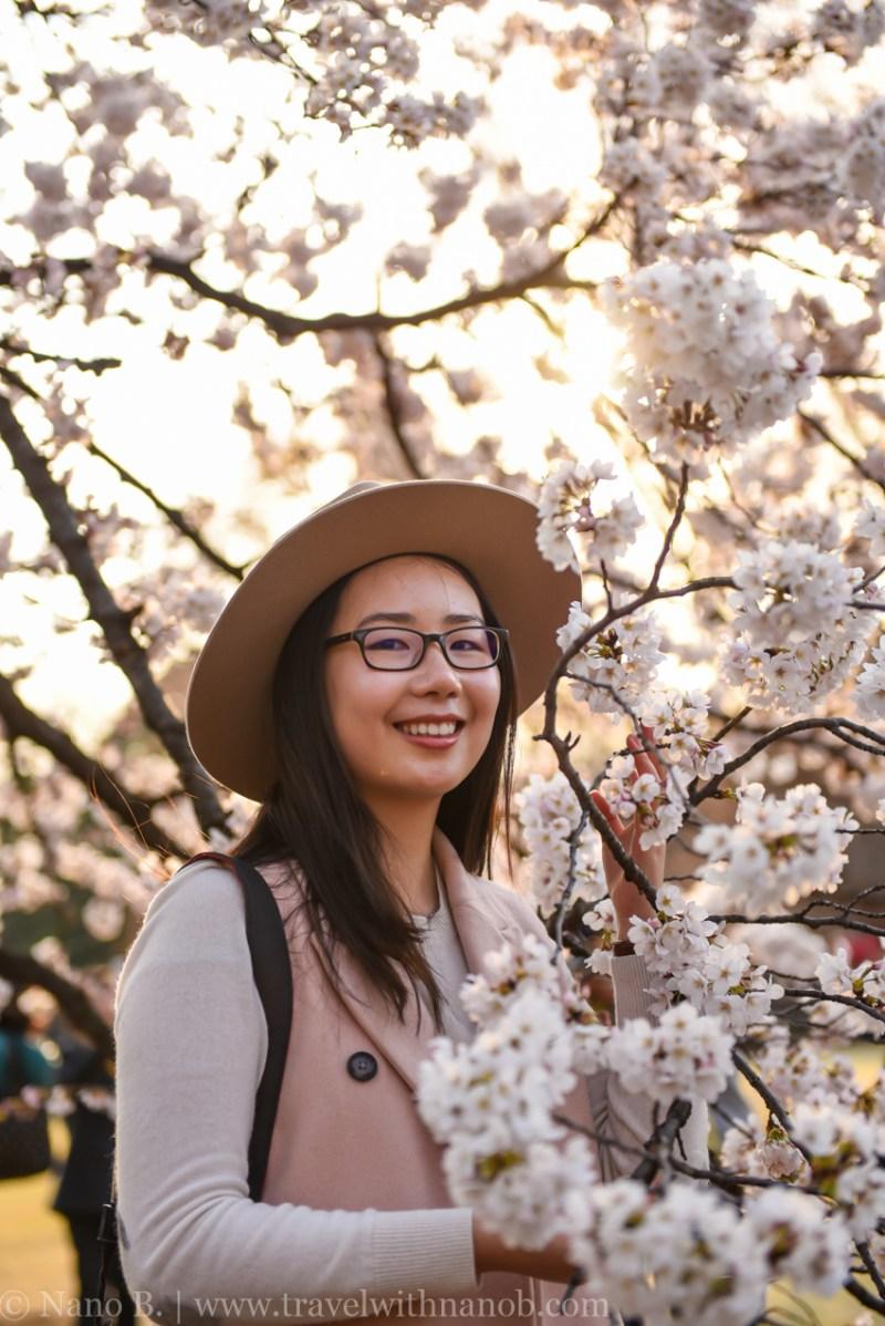 cherry-blossom-tokyo-69
