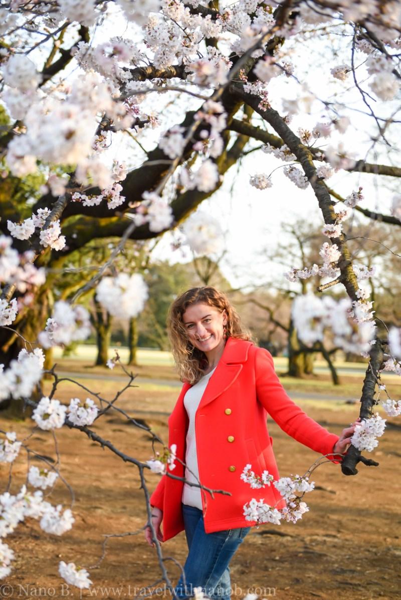 cherry-blossom-tokyo-75