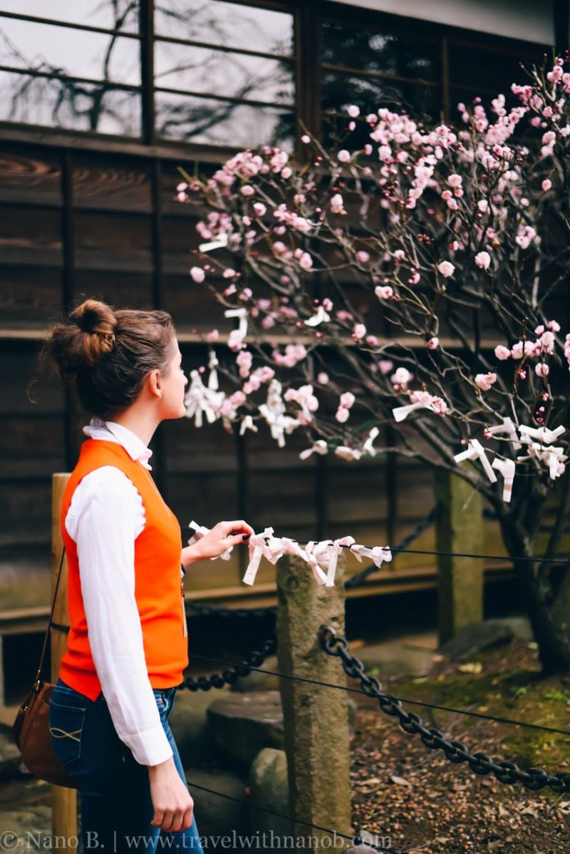 tokyo-shrines-12