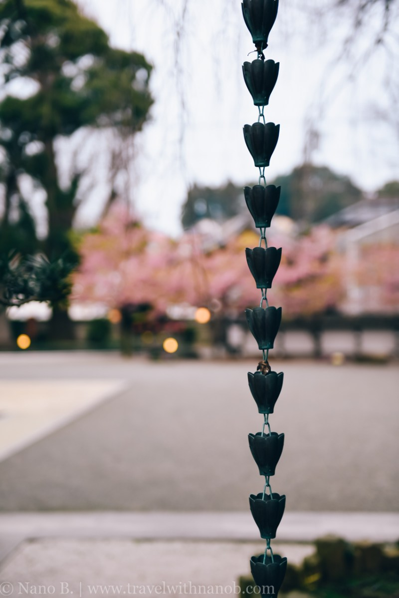 tokyo-shrines-49