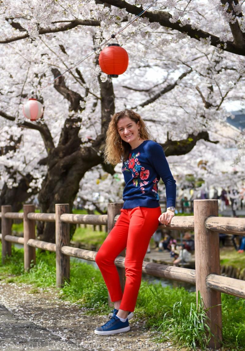 Kawagoe-Cherry-Blossom-29