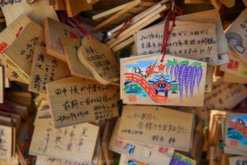 wisteria-in-kameido-tenjin-31