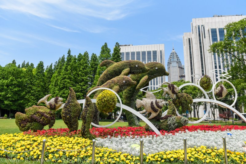 shanghai-things-to-do-110