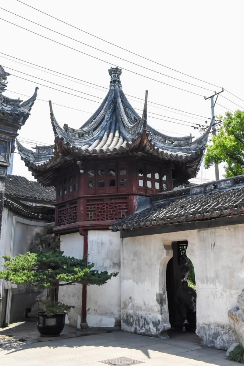 shanghai-things-to-do-96