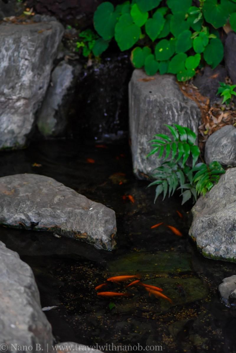 mabashi-inari-shrine-13