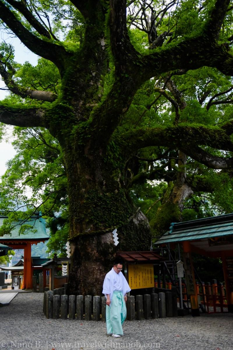 nachi-falls-wakayama-13