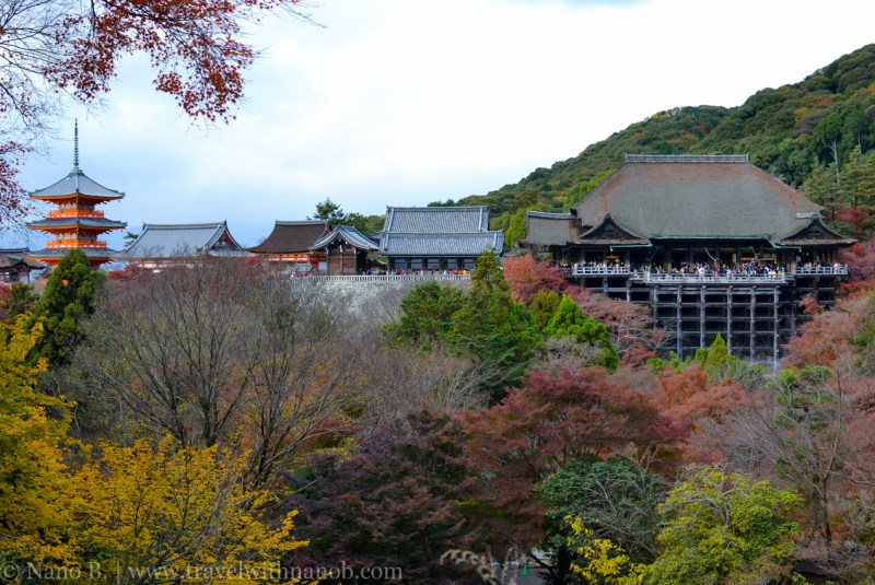 kyoto-autumn-leaves-59