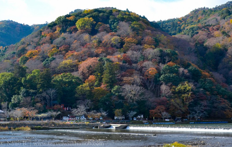 kyoto-autumn-leaves-6