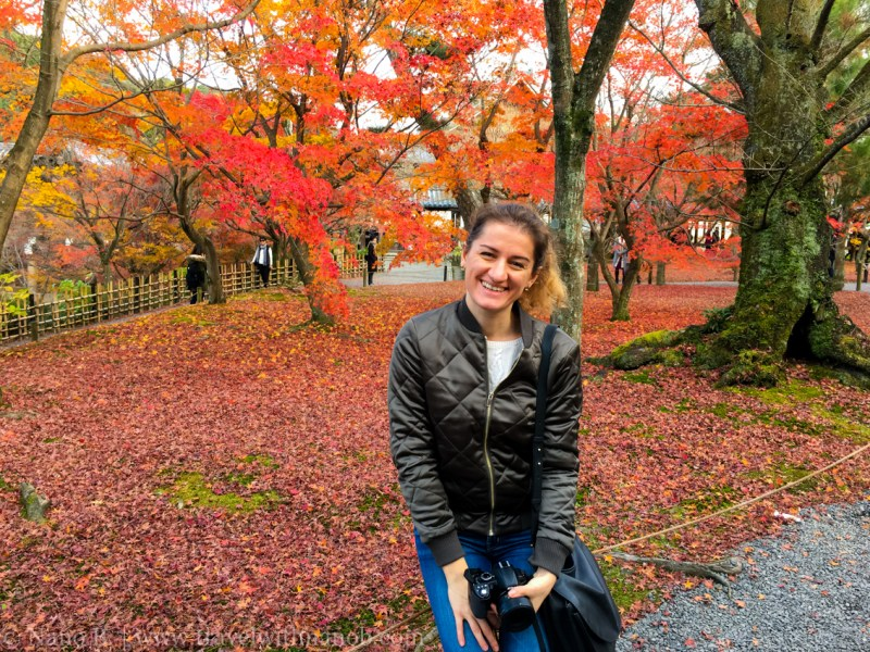 kyoto-autumn-leaves-78
