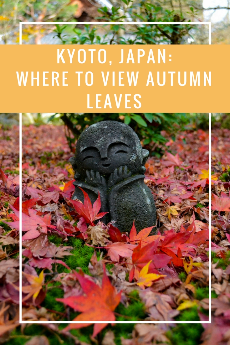 Viewing Kyoto Autumn Leaves