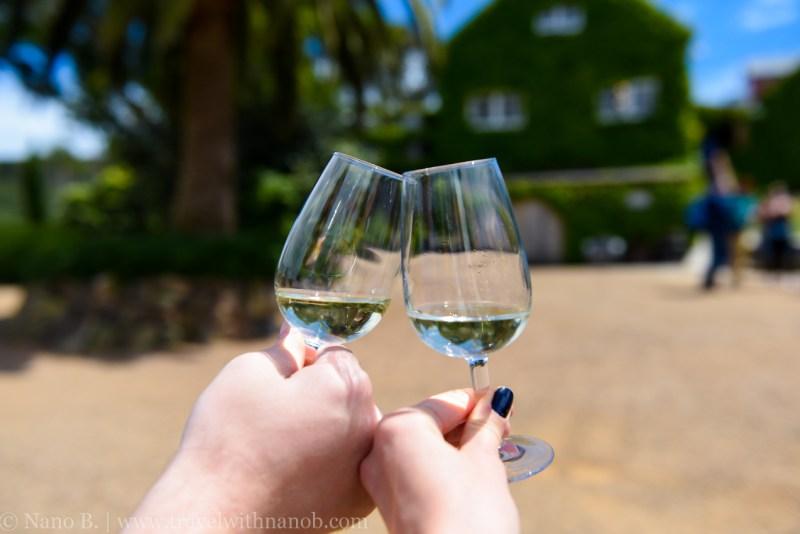 waiheke-island-wine-tour-2