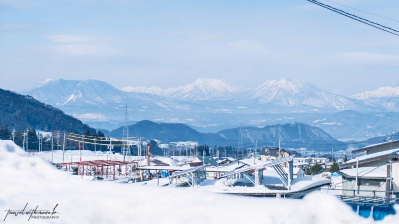 japanese-snow-monkeys-jigokudani-nagano-1