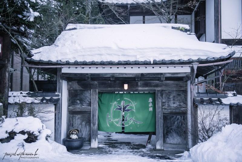 japanese-snow-monkeys-jigokudani-nagano-3