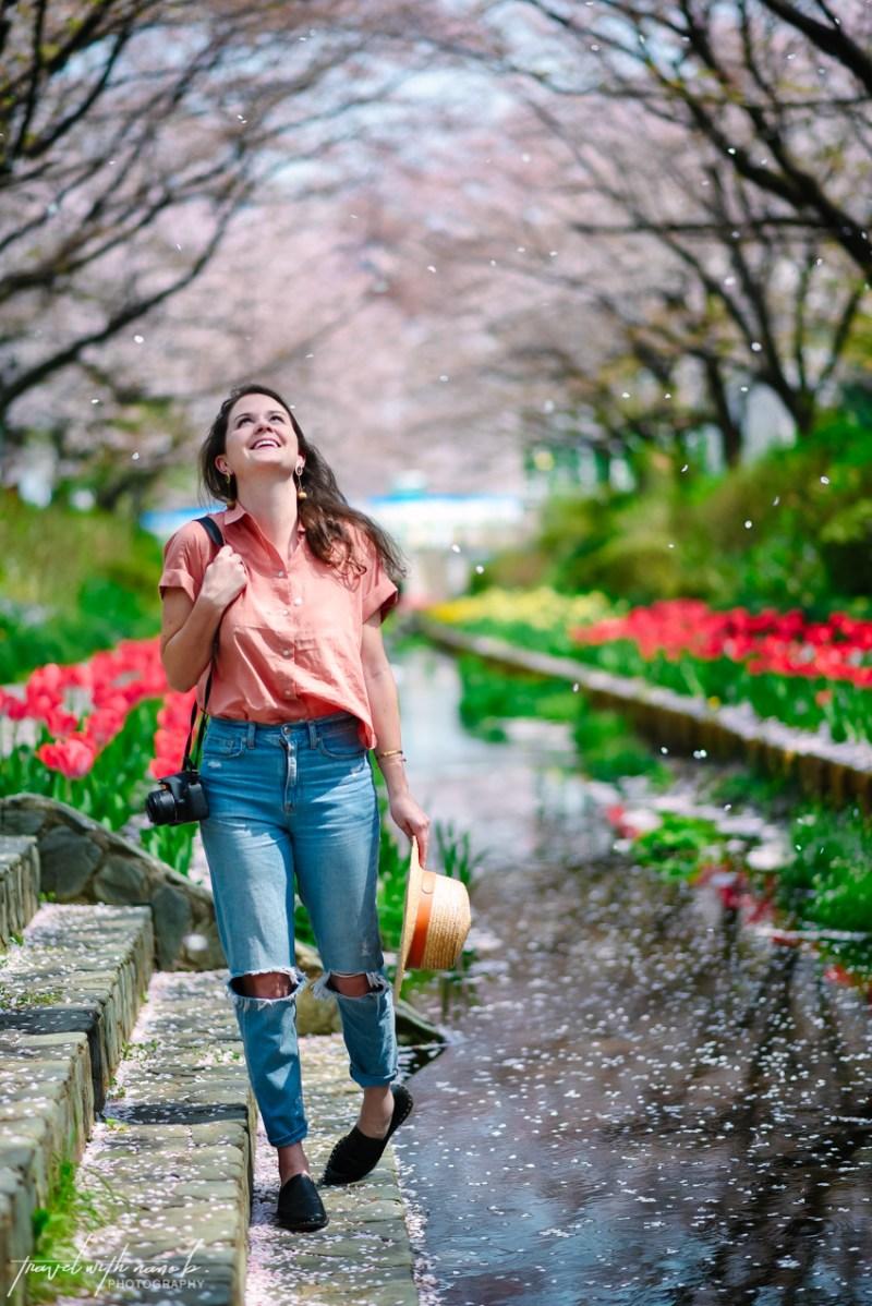 cherry-blossoms-yokohama-1-2
