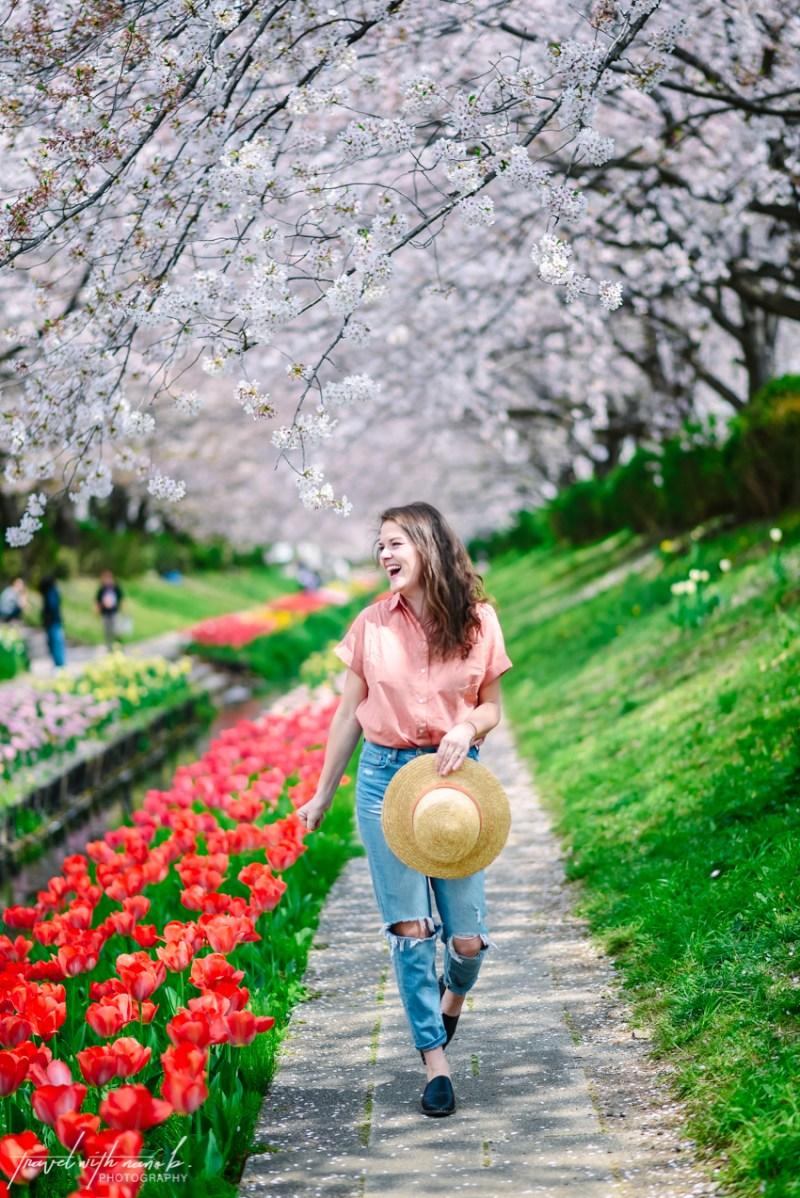 cherry-blossoms-yokohama-1