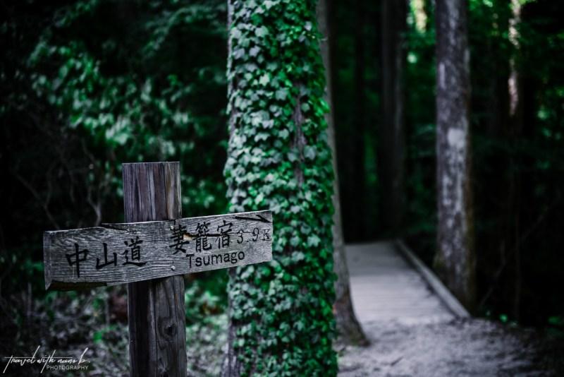 kiso-valley-magome-tsumago-hike-japan-9
