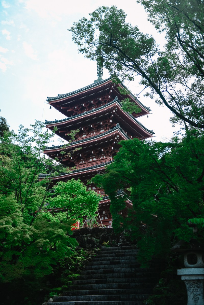visit-kochi-prefecture-shikoku-japan-24