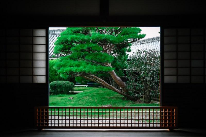 visit-kochi-prefecture-shikoku-japan-38