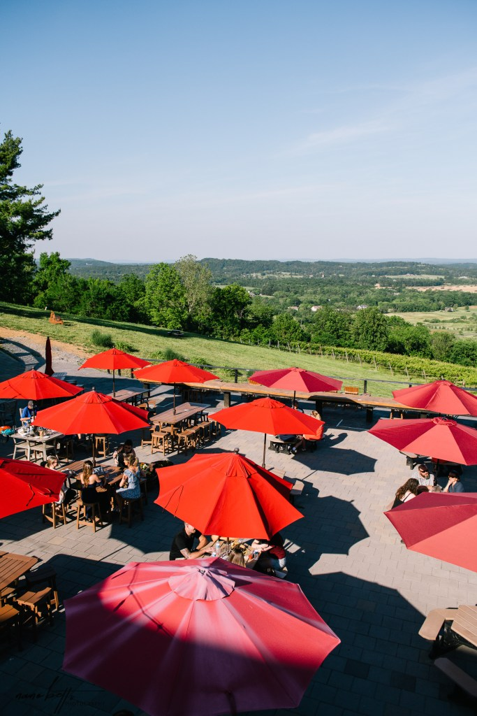 Visit to Bluemont Vineyard, one of the best wineries in northern Virginia