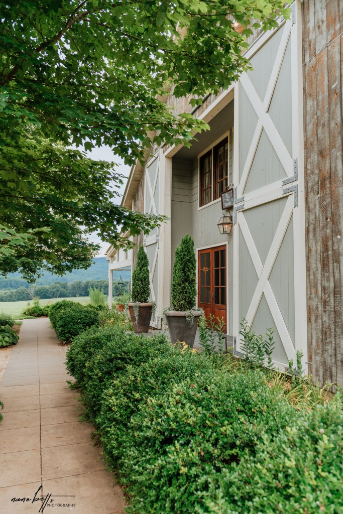Tour of Virginia top wineries, visit to Pippin Hill Farm and Vineyards