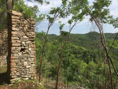 Las Terrazas, Cuba, abandoned slave quarters, French coffee plantation