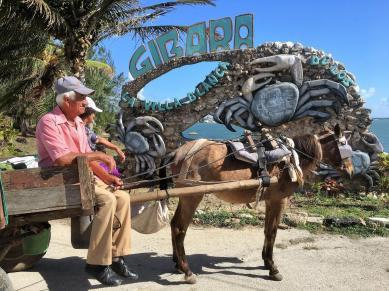 Horse cart A