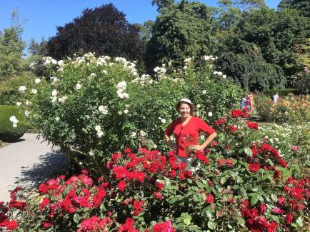 Botanical Gardens in Christchurch