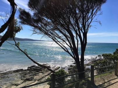Toquay, near Melbourne