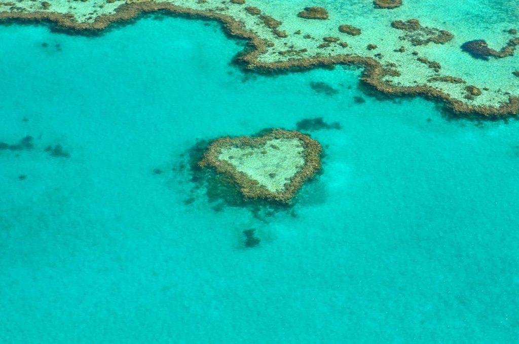 Bucket list adventure on Great Barrier Reef