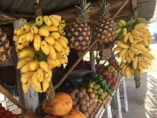 Holguin fruit stand, seen in all Cuban towns