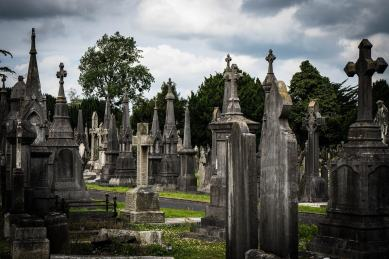 fall in love with Ireland and its cemeteries