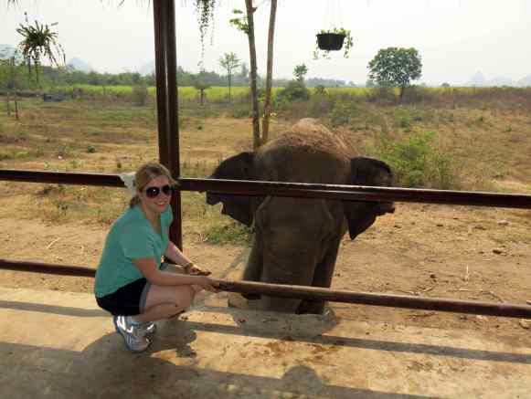 Volunteering at an elephant sanctuary