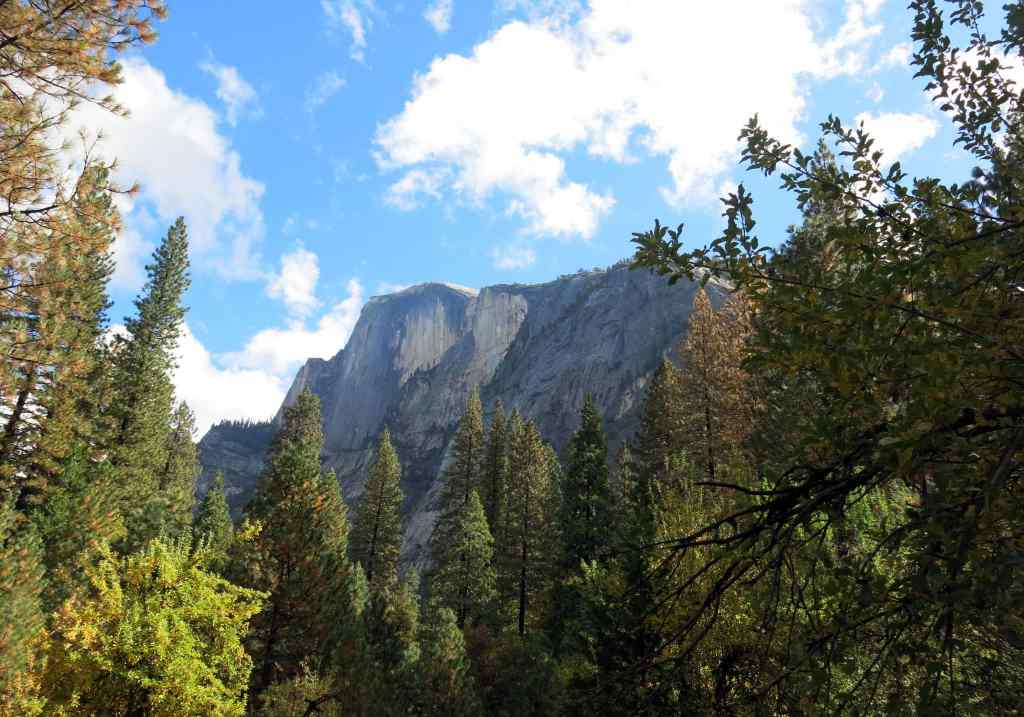 The Yosemite National Park is majestic and filled with wonder.